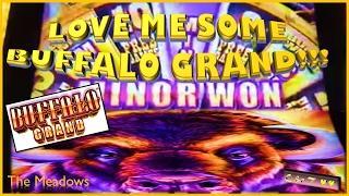 •Heck Yea!!! •Buffalo Grand in the HOUSE • Slot Machine Bonus ~ Aristocrat•