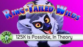 Ring Tail Wilds slot machine Bonus