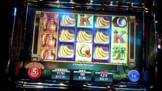 Jungle Monkeys slot bonus win at Hollywood Casino