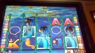 Magic mermaid slot machine $1174 bonus win
