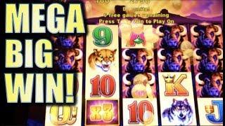 •MEGA BIG WIN! • • MY BIGGEST BUFFALO WIN TO DATE! (Aristocrat) Slot Machine Bonus