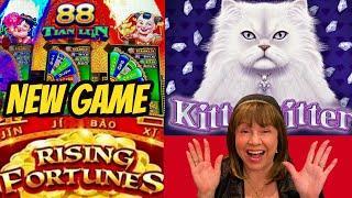 Fortunes Rise? Kitties Glitter? New game fun?