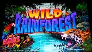 Wild Rainforest Slot - Live Play Bonus!