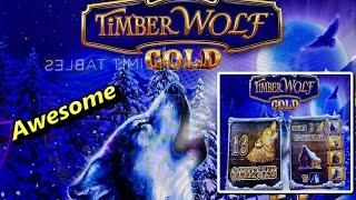 ⋆ Slots ⋆NEW TIMBER WOLF ! ALMOST HANDPAY !!!⋆ Slots ⋆TIMBER WOLF GOLD Slot (Aristocrat) $3.60 Bet⋆