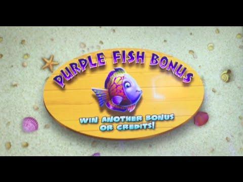 Gold Fish 3   5 cents machine Purple Fish Bonus ** SLOT LOVER ** ** SLOT LOVER **