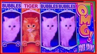 ** OMG KITTENS ** 25 FREE GAMES n others ** SLOT LOVER **