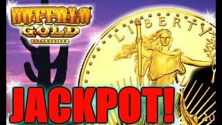 •JACKPOT BUFFALO GOLD • CASH'S LIVE SLOT MACHINE BONUS HANDPAY