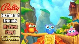 • FEATHERED FRIENDS - BALLY - SCIENTIFIC GAMES / BALLY -- The Shamus and Friends •