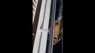 Norwegian Gem Cruise Ship Picking up the Pilot