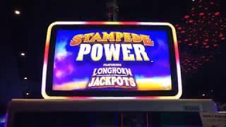 LONGHORN JACKPOTS ~ STAMPEDE POWER ~ Free Game Bonus ~ Live Slot Play @ San Manuel