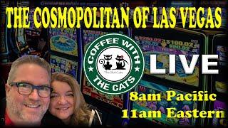 • LIVE: COFFEE WITH THE CATS 01/12/2020