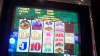 Whales of cash aristocrat slot machine bonus round