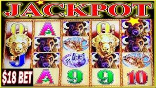 • FINALLY JACKPOT HANDPAY BUFFALO GOLD THE CURSE IS BROKEN $18 BET BONUS • HIGH LIMIT SLOT MACHINE •