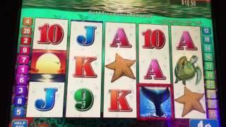 Ocean's Wild Slot Machine ~ FREE SPIN BONUS! STICKY WILDS ~ MAX BET! ~ Kewadin Casino! • DJ BIZICK'S