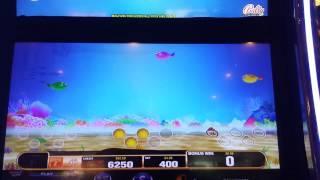 Fish'n For Loot Slot Bonus Max Bet.