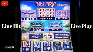 (First Attempt ) Novomatic - Big Five Jackpots : Line Hit & Live Play