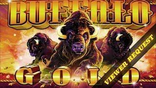 Pechanga Casino • Buffalo Gold Viewer Request • The Slot Cats •