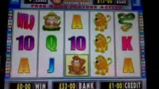 Risque business 1 denom igt slot machine gamesoft monkey business feature 500 jackpot b3 fruit machine publicscrutiny Image collections