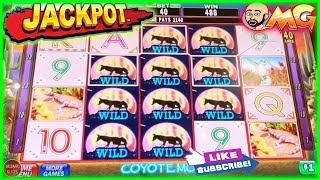 • AMAZING WILDS LINE HIT • JACKPOT HANDPAY • CAT'S • COYOTE MOON HIGH LIMIT BETS