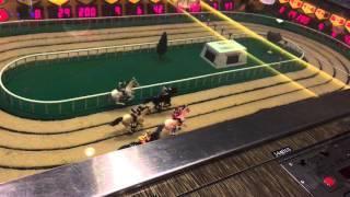 Old Sigma Derby Horse Race Machine