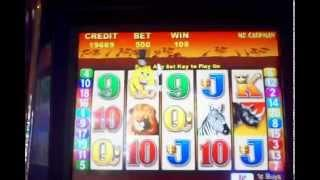 Mr Cash Man African Dusk MAX BET slot machine magic fingers bonus