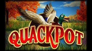 Quackpot Slot - NICE SESSION, ALL FEATURES!