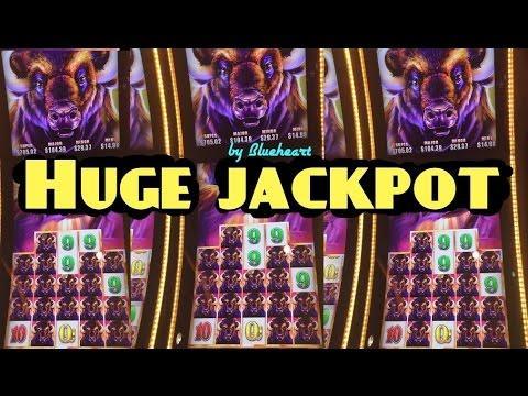 BUFFALO GRAND slot BIGGEST JACKPOT HANDPAY Buffalo Line Hit on YouTube