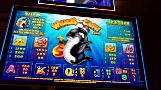 Whales of cash slot machine online free play roulette online for free