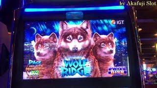 Super Big Win/ Barona Part 1•New Game • WOLF RIDGE  Slot•  First Attempt / Akafujislot