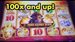 Buffalo Gold Slot 100x + big wins