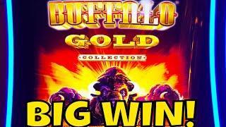 BUFFALO GOLD BIG WIN! & DRACULA Live Play
