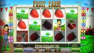 online casino black jack novomatic games