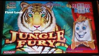 Konami - Jungle Fury :  Line Hit & Bonus on a $0.80 bet