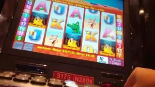Going for 8th Major Jackpot part 2! Outback Jack slot. *Max bet with big wins* Card features*