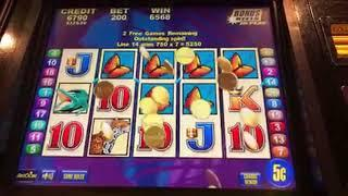 Brazil - Amazing Bonus Jackpot Win - $10 Bet Free Games Handpay