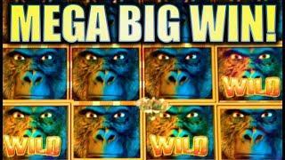 •AMAZING MEGA BIG WIN!!• GORILLA CHIEF • (WMS) | MAX BET SUPER BIG WIN! Slot Machine Bonus [REPOST]