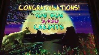 Coyote Moon Bonus Round at $40/pull at the Lodge Casino