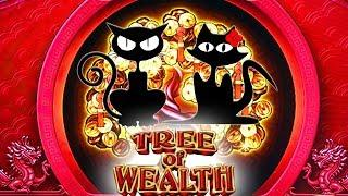 Chasing the Progressives & Bonuses • Tree of Wealth • The Slot Cats •