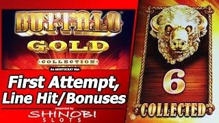 Buffalo Gold Slot - First Attempt, Nice Line Hit and 2 Free Spins Bonuses