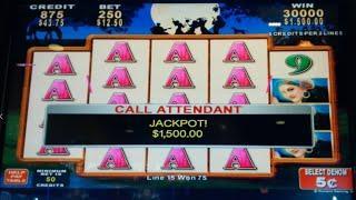 UNEXPECTED JACKPOT! Band of Gypsies Slot - IT JUST HAPPENED!! #Shorts