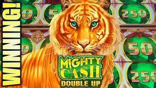 •WINNING! NICE TIGER RUN• MIGHTY CASH DOUBLE UP Slot Machine Bonus (Aristocrat)