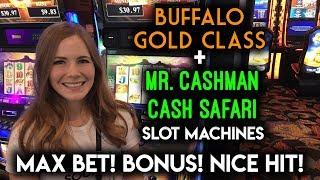 First Try on Buffalo Gold Class Slot Machine! Max Bet Train BONUS!
