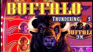BUFFALO THUNDERING 7S •️vs. BUFFALO GOLD (SUPER FREE GAMES) TALL FORTUNES Slot Machine Win