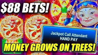 BETTING $88 AND WON BIG JACKPOT HANDPAYS! ⋆ Slots ⋆ TREE OF WEALTH 88 FORTUNES SLOT MACHINE
