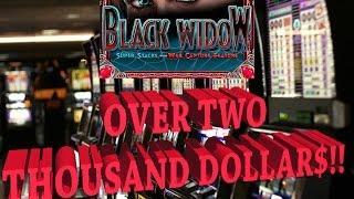 •Raja Wins On Black Widow Machine | 75 Credit Bet | Over TWO Thousand Dollar Jackpot!•