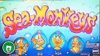 Sea Monkeys slot machine, bonus