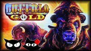 Triple Red Hot Sevens • Poppin Fish • Buffalo Gold • The Slot Cats •