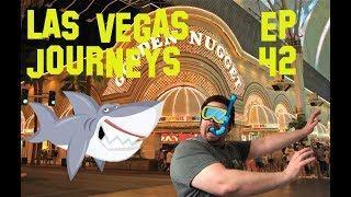 "Las Vegas Journeys- Episode 42 ""SLOTS, SHARKS AND FREMONT STREET"""