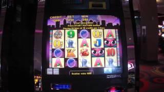 Miss Kitty casino slot LIVE PLAY MAX BET BONUS FREE SPINS BIG WIN machine game