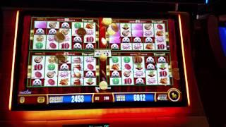 Aristocrat Wonder 4 Jackpots Wild Panda BIG WIN Free spins